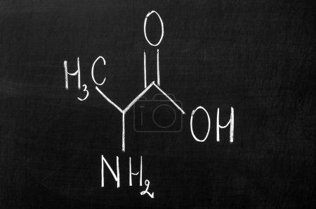 Photo pour Alanine is an amino acid with the chemical formula CH3CH(NH2)COOH. The L-isomer is one of the 20 amino acids encoded by the genetic code. Its codons are GCU, GCC, GCA, and GCG. It is classified as a non-polar amino acid. - image libre de droit
