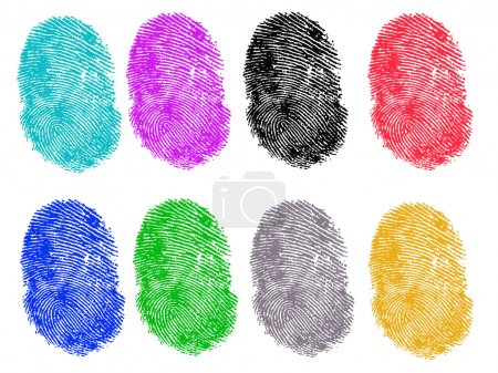 Illustration for 8 Colored Vector Fingerprints - Very accurately scanned and traced ( Vector is transparent so it can be overlaid on other images, vectors etc. - Royalty Free Image