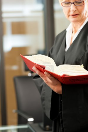 Female lawyer with German civil code
