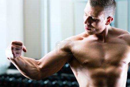 Photo for Strong man, bodybuilder posing in Gym, dumbbells are in the background - Royalty Free Image