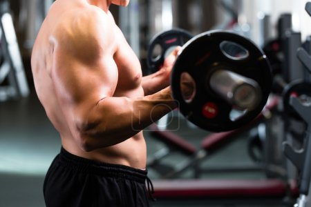 Photo for Strong man - bodybuilder with dumbbells in a gym, exercising with a barbell - Royalty Free Image