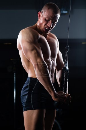 Photo for Strong man - bodybuilder with dumbbells in a gym, exercising with a rope - Royalty Free Image
