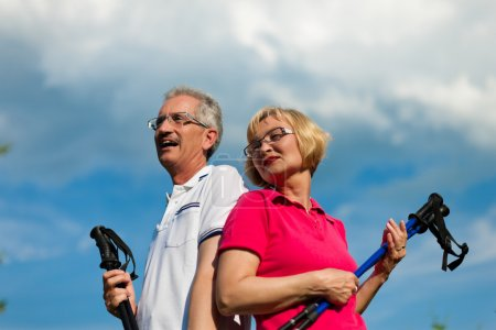 senior couple doing Nordic walking in summer