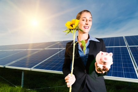 Photovoltaic system with solar panels for the prod...