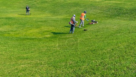 Lawn care. Cutting grass.