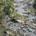 Garbage in water  sacred hinduism Bagmati river, K...