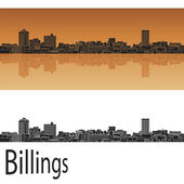 Billings skyline in orange