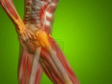 joints or articular pain, ache