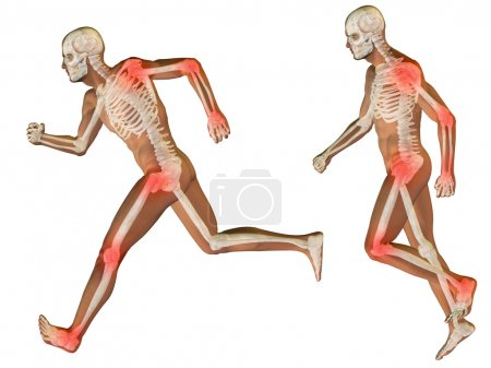 men for anatomy designs