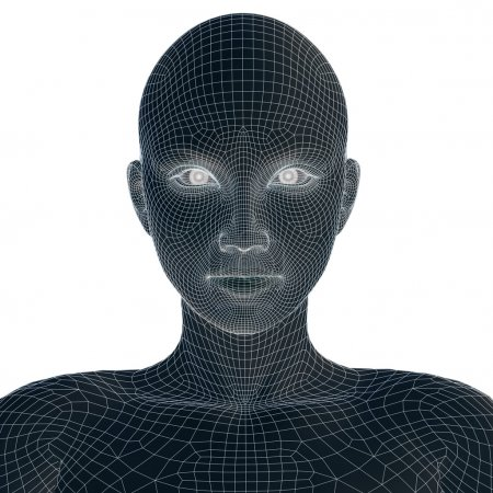 3D wireframe young woman face