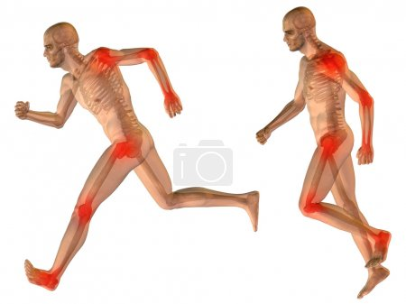 3D human with muscles for anatomy or health designs