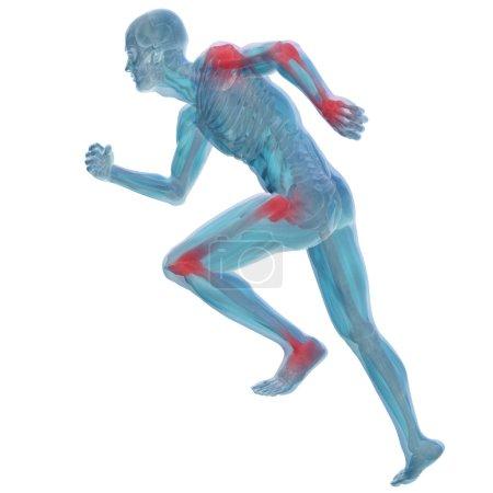 conceptual man anatomy illustration