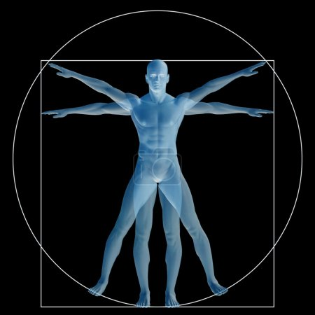Vitruvian human or man as a concept