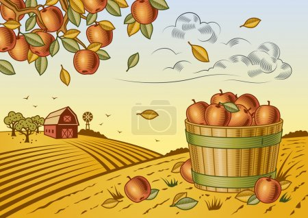 Illustration for Retro landscape with apple harvest in woodcut style. Fully editable vector illustration with clipping mask. - Royalty Free Image