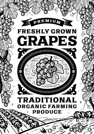 Retro grapes poster black and white