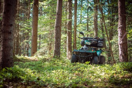 ATV's parked in the parking lot in the forest. good weather.