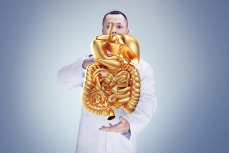 Doctor with stethoscope and golden digestive system on the hands in a hospital. High resolution.