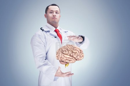 Doctor with stethoscope and brains on the hands. gray background. High resolution.