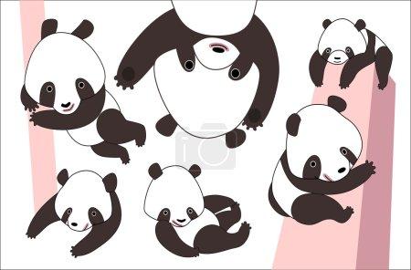 Illustration pour Un ensemble vectoriel illustré d'un petit ours panda dans différentes poses. - image libre de droit