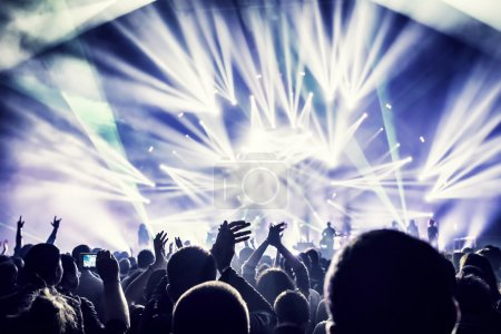 Crowd enjoying concert
