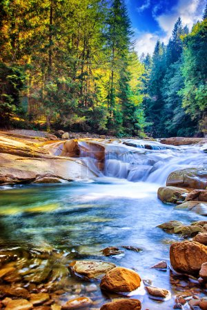 Photo for Beautiful waterfall in the forest, amazing fast water stream between stones, wonderful landscape, beauty of wild Ukrainian nature - Royalty Free Image