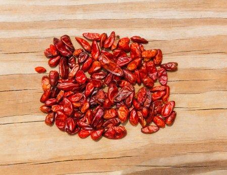 Chile Piquin hot chili pepper