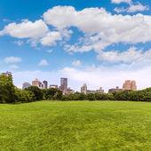 Central Park Sheep meadow Manhattan New York