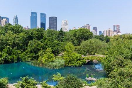 Central Park The Pond Manhattan New York