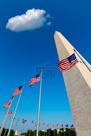 Washington DC Monument and american flags US