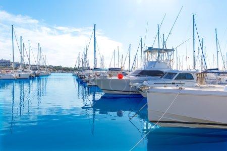 Platja de Alcudia marina in Mallorca Majorca
