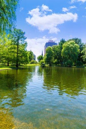 БостонКоммон озеро и городской пейзаж