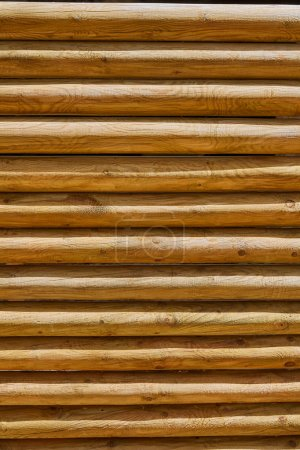 Fence of stacked round trunks wood pattern
