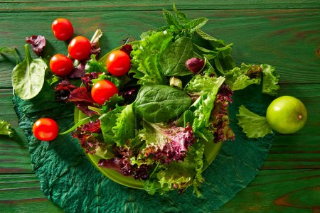 Fresh green salad with spinach lettuce
