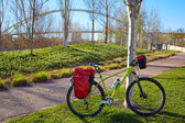 Bicycle touring bike in Valencia Cabecera park