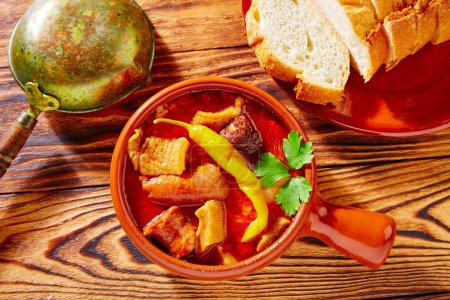 Tapas Callos madrilena typical from Madrid