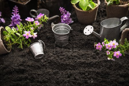 Photo for Gardening tools, watering can, seeds, flowers and soil. Garden concept background - Royalty Free Image