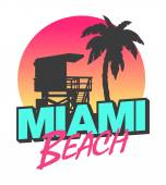 Colorful symbol of Miami beach with the famous house and palm tree