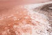 Close up  of salt marsh in Salinas  in Sal Cape Verde - Cabo Ver