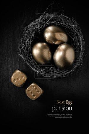 Pension Nest Egg IV