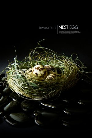Investment Nest Egg