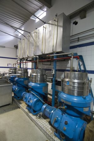 Modern industry facility for olive production