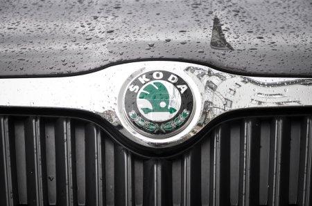 Skoda Chrome logo