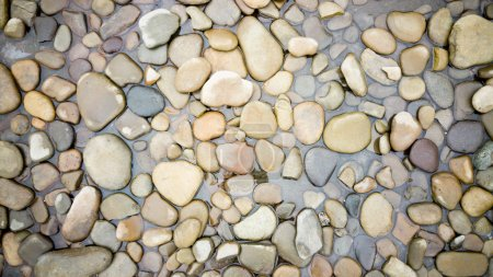 Top view on colorful pebbles covered by water