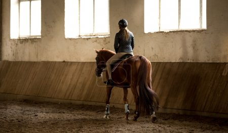 woman doing horseback riding in manege