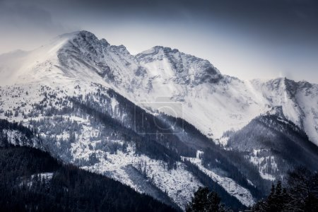Landscape of high Alps covered by snow at morning