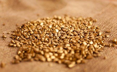 mound of golden nuggets lying on burlap