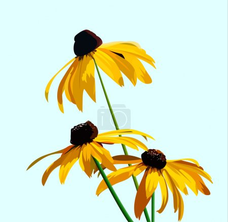 Illustration for Rudbeckia flower on a background of blue sky. vector illustration for your design, cosmetic banners, brochures and promotional items - Royalty Free Image
