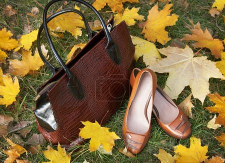 Leather luxury woman handbag and shoes isolated on white background with autumn leaves. Autumn sales concept