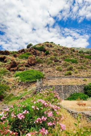 A rocky terrace shore of Alicudi island.