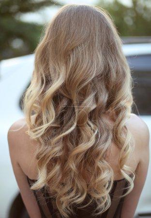 Photo pour Cheveux sains. Coiffure long bouclé. Vue arrière de poils blonds. coiffure. - image libre de droit